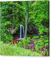 Scott Falls Canvas Print