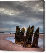Scottish Coast Canvas Print