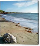 Seascape Wales Canvas Print
