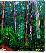 Sewp 6 15 Canvas Print