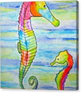 Shave-ice Seahorses Canvas Print