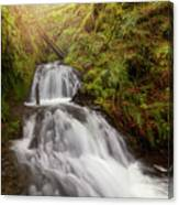 Shepperd's Dell Falls Canvas Print