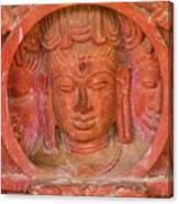 Shiva's Face On A Pillar At Chand Baori Canvas Print