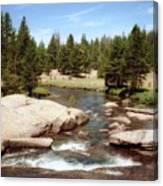 Sierra Nevada Mountain Stream Canvas Print
