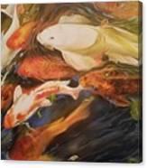 Simply Koi Canvas Print