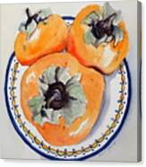 Simply Persimmons Canvas Print