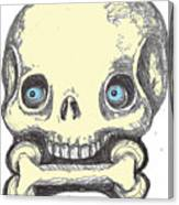 Skullnbone Canvas Print