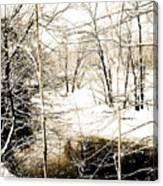 Snow-covered Stream Banks, Pennsylvania Canvas Print