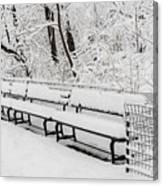 Snow In Central Park Nyc Canvas Print