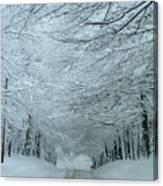 Snow Tunnel Canvas Print