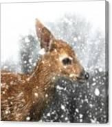 Snowing Canvas Print