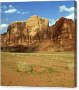 Sparse Tussock And Rock Formations In The Wadi Rum Desert Canvas Print