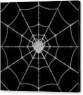 Spider No.2 Canvas Print