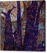 Splayed Trunks Canvas Print