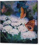 Splendor In The Meadow Canvas Print
