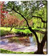 Spring At Tappan Park Pond Canvas Print