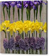 Spring Delights Canvas Print