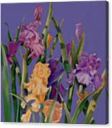 Spring Recital Canvas Print