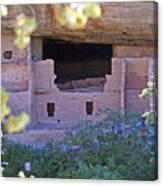 Spruce Tree House - Mesa Verde National Park Canvas Print