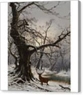 Stag In A Snow Covered Wooded Landscape Canvas Print