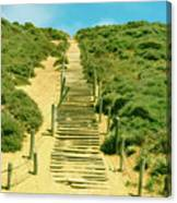 Steps To The Beach Canvas Print