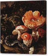 Still Life With Serpents, Fly Agarics And Thistles Canvas Print