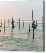 Stilt Fishermen - Sri Lanka Canvas Print