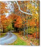 Stone Autumn Road Canvas Print