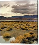 Storm In The Desert Canvas Print