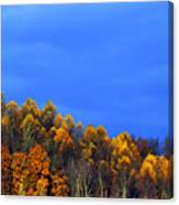 Stormy Sky Last Fall Color Canvas Print