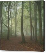 Stunning Colorful Moody Vibrant Autumn Fall Foggy Forest Landsca Canvas Print