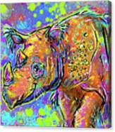 Sumatran Rhino Canvas Print
