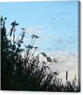 Summer Hedgerow Canvas Print
