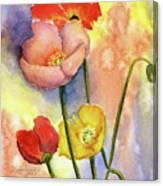 Summer Poppies Canvas Print