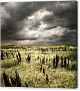 Summer Storms Canvas Print