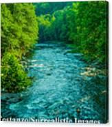 Summer Stream Canvas Print