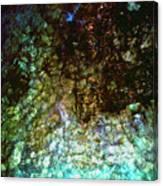 Sunken Jewels Canvas Print