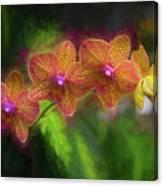 Sunset Doritaenopsis Orchid Canvas Print