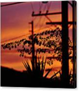 Sunset Sihouettes Canvas Print