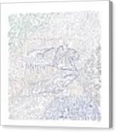 Susie Q Canvas Print