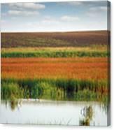 Swamp With Birds Landscape Autumn Season Canvas Print