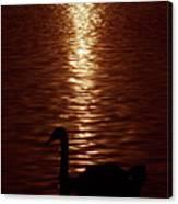 Swan Silhouette Canvas Print