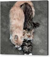 Sweet Couple Canvas Print