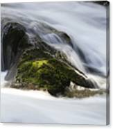 Sweet Creek Oregon 13 Canvas Print
