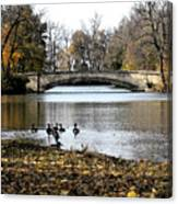 Tenney Park Canvas Print