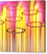 Test Tubes In Science Lab Canvas Print