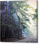 Texas Morning Canvas Print