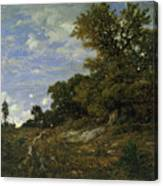 The Edge Of The Woods At Monts-girard, Fontainebleau Forest Canvas Print