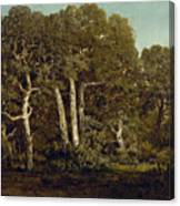 The Great Oaks Of Old Bas-breau Canvas Print