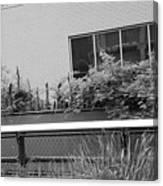 The High Line 151 Canvas Print